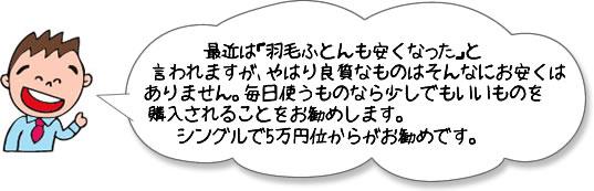 羽毛ふとんはシングルで5万円からがお勧めです。